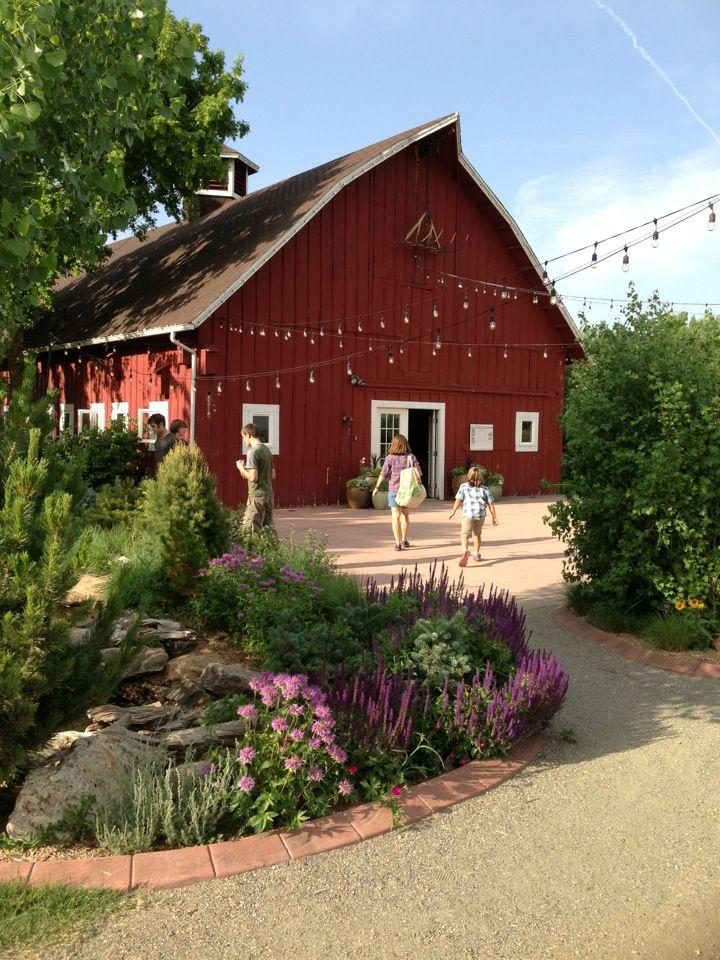 81a82516cd575ac56fd9efbee00ccab7 - Denver Botanic Gardens Corn Maze Hours