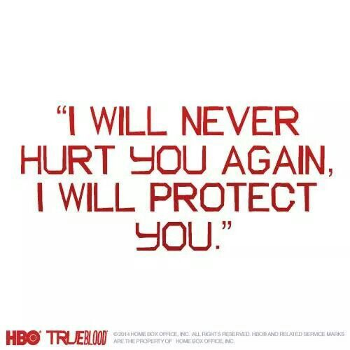 I Will Never Hurt You Again I Will Protect You Love And Life