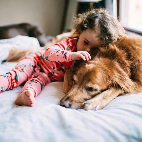 Imagem de dog and cute