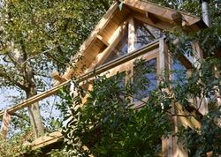 Uplands Treehouse Bristol Canopy Stars Travel Ideas