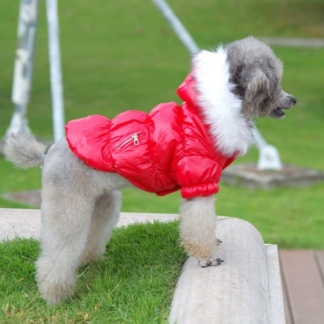 Free Shipping Pet Products Small And Big Cheap Dog Clothes For