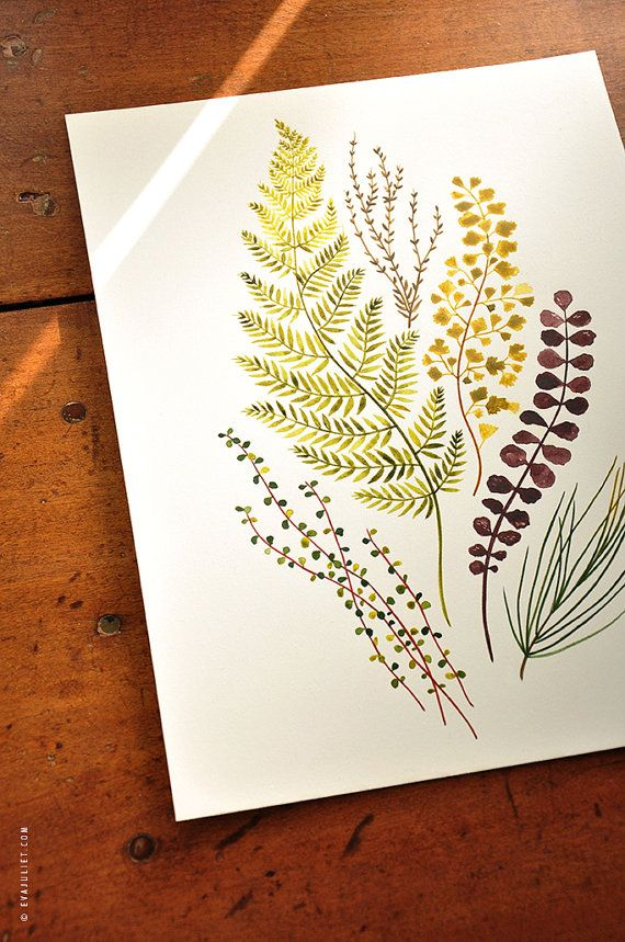 Plant mix no.02 - 8x10 Botanical Watercolor Collection. $28.00, via Etsy.