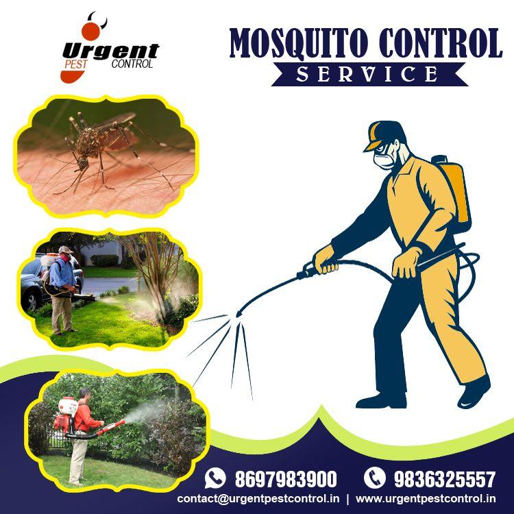 Mosquito Control Service Mosquito Control Mosquito Control