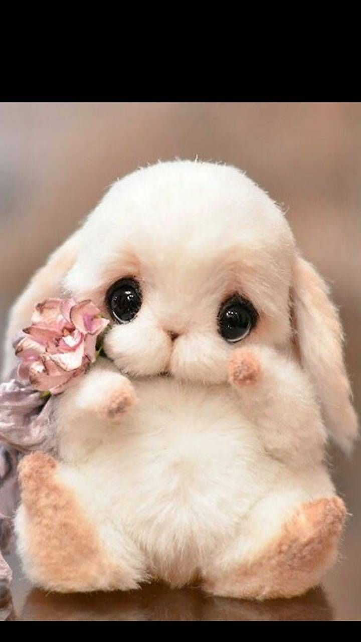 Download Cute Wallpaper By Ghoserupa D6 Free On Zedge Now Browse Millions Of Popular Bunny Wallpape Cute Baby Dogs Cute Baby Animals Cute Stuffed Animals