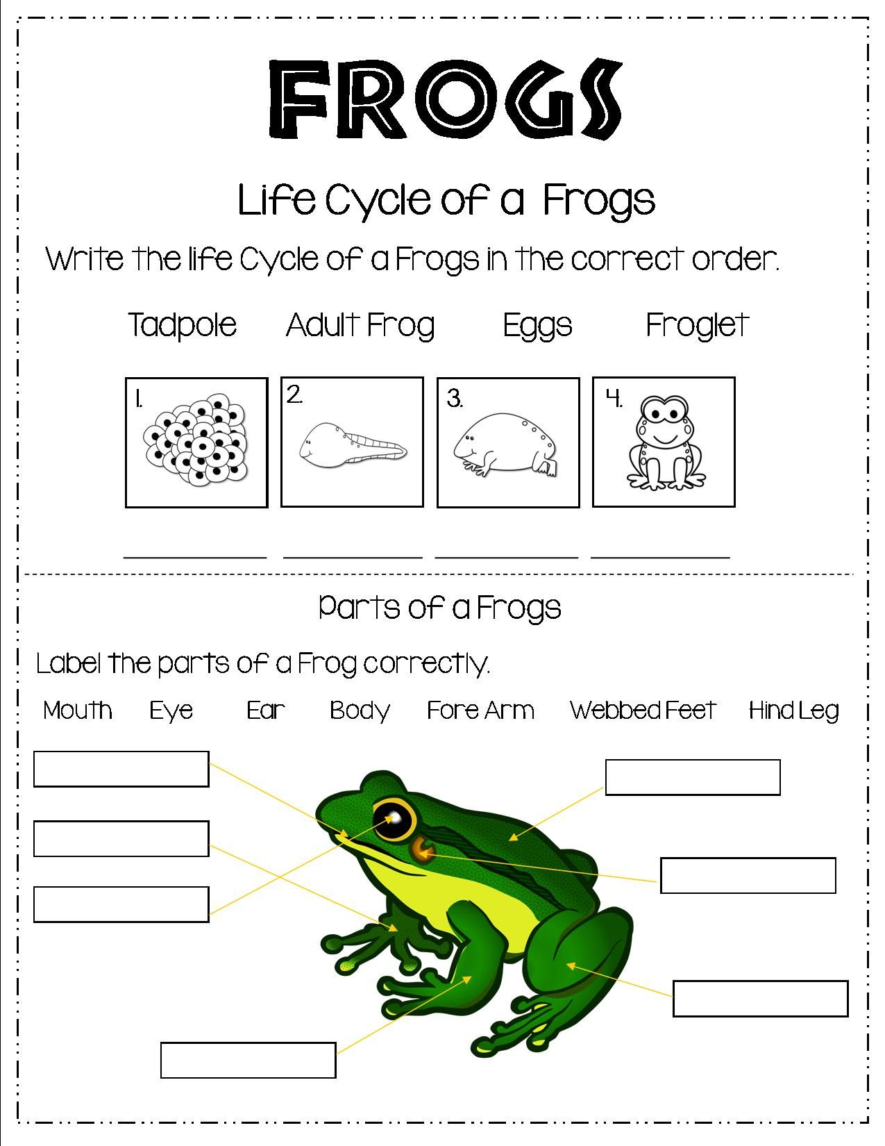 1st Grade Science Worksheets Frogs   Printable Worksheets and Activities  for Teachers [ 1650 x 1275 Pixel ]