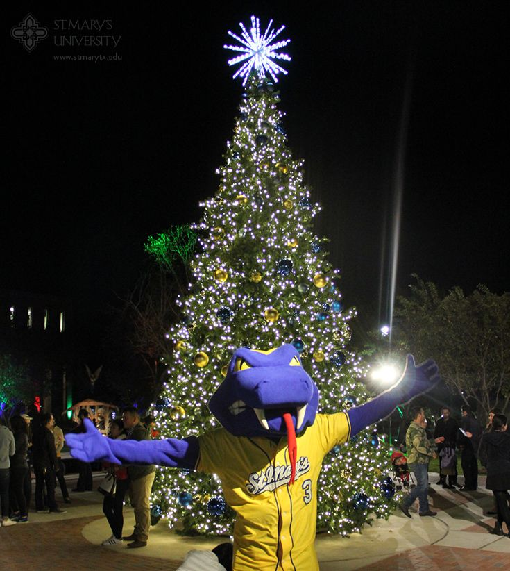 Christmas Tree San Antonio: Rattler Man Gets In The Holiday Spirit At The 10th Annual