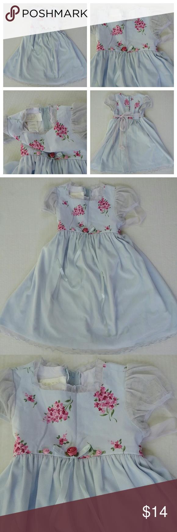 Biscotti Collezion Girls 4T Dressy Dress Blue Rose | Stains, Dress ...