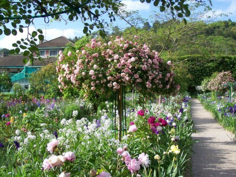 Rose Garden Landscaping Ideas Rose Garden Ideas Rose garden