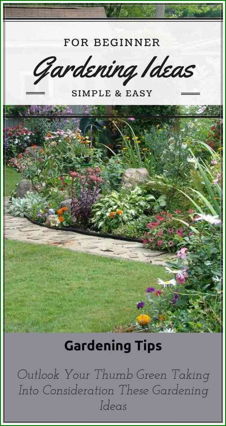 Things That You Need To Know Gardening For Beginners Rachyl Gardening Gardening For Beginners Easy Garden Beginners