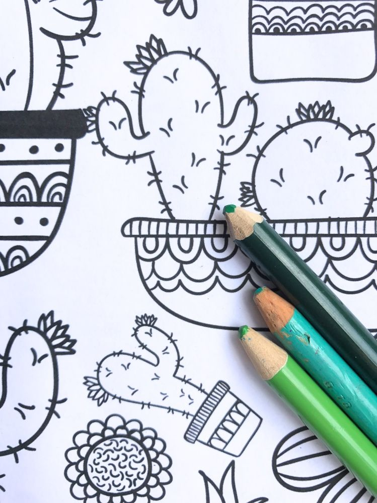 Cactus and Succulent Printable Adult Coloring Pages
