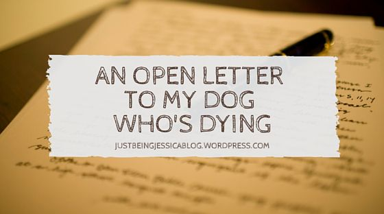 An Open Letter to My Dog Who's Dying