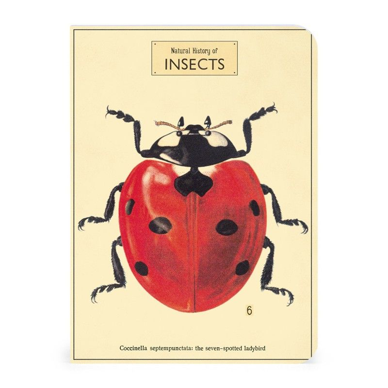 Straßenpreis günstige Preise Bestbewertete Mode Carnets Insectes | Insectes/Animaux | Coccinelle insecte ...