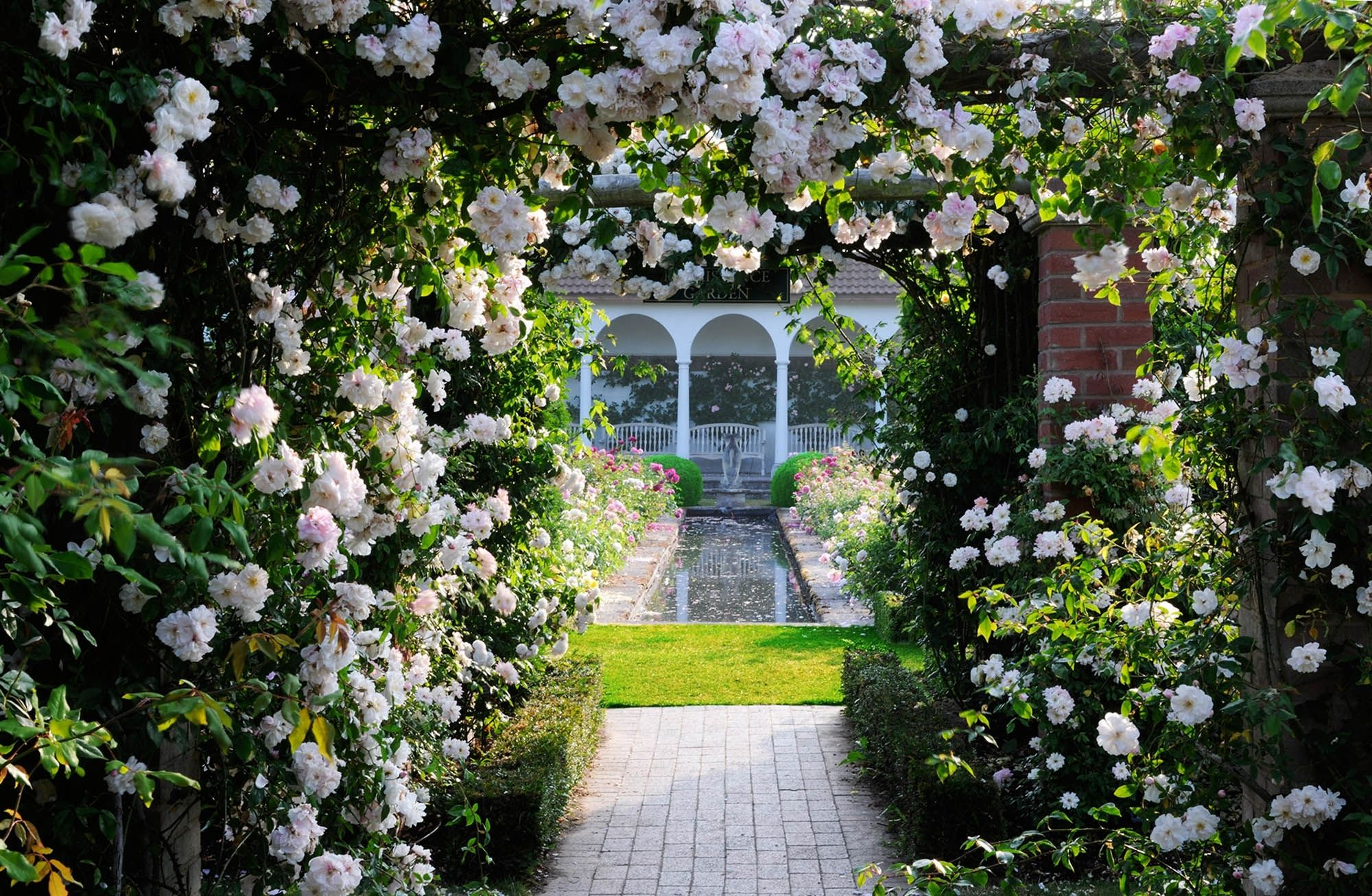 Most Beautiful Home Gardens In The World David Austin Rose