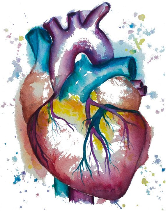 Heart watercolor painting-- watercolor print, heart print, cardiac ...
