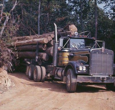 kenworthh hauling logs