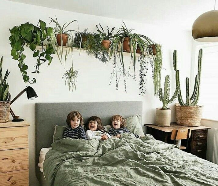 Such A Unique Way To Frame Your Sleeping Space Thnx Shelbyjeffels Urban Minimalist Be Bedroom Plants House Plants Decor Bedroom Decor