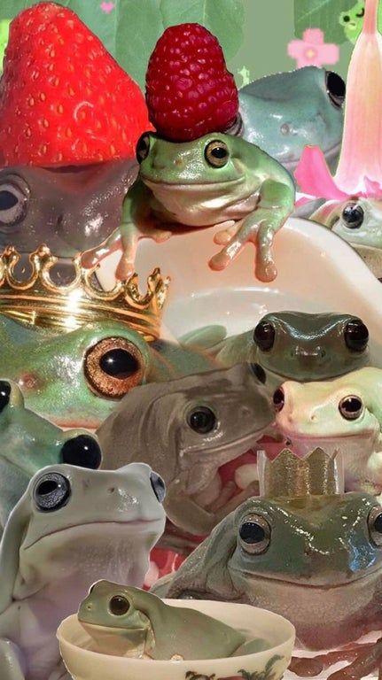 Frog overload