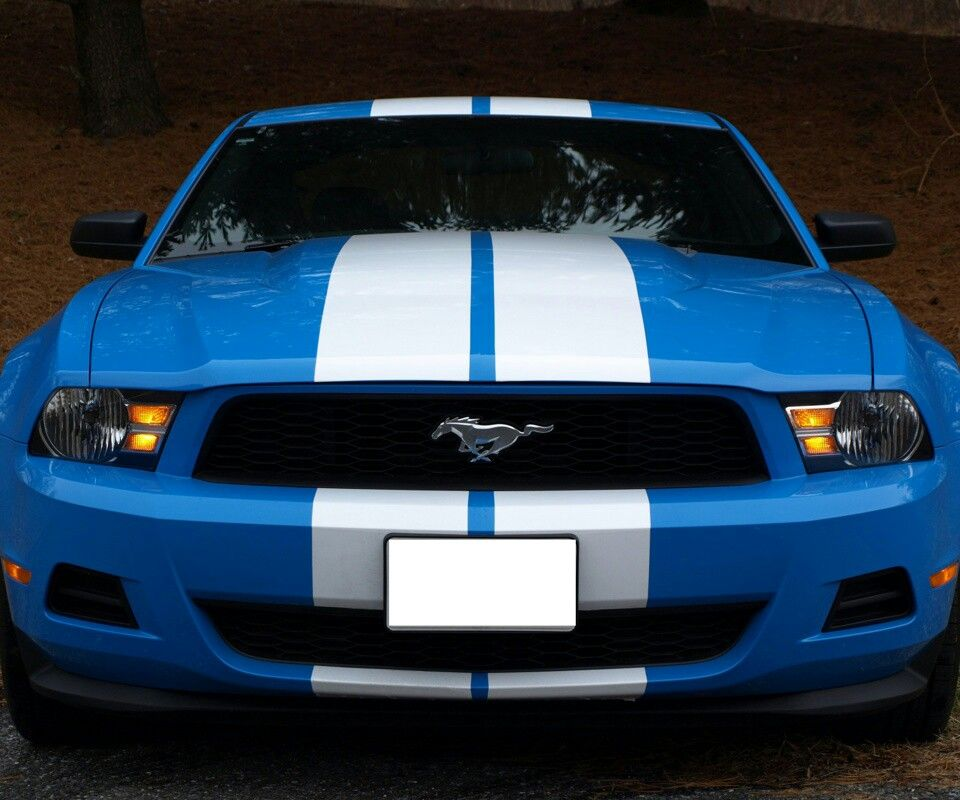 Mustang GT, Love The Colors! :)