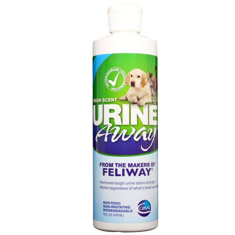 Best Cleaner To Remove Cat Urine Smell - (Top 8 2019 ...