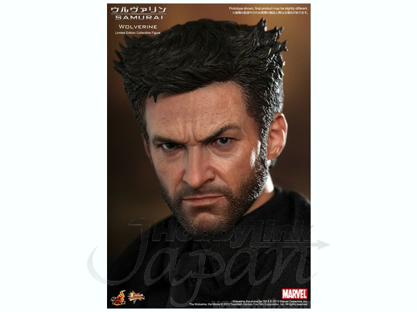 Marvel: Wolverine / Size: 36.5 x 23.5 x 12.0 cm / Hot Toys