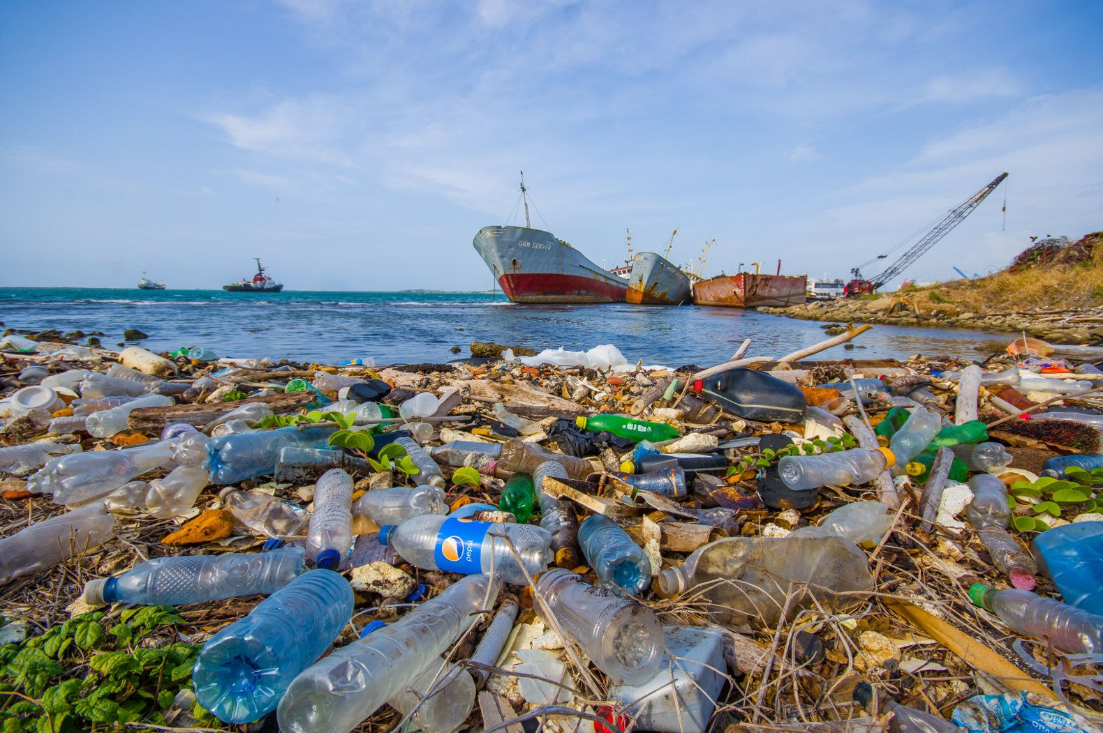 New report says plastic trash to exceed fish in the sea by