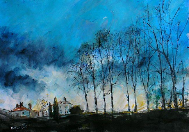 Winter Trees Sunlight, Bingham Park, Sheffield by mark h wilson