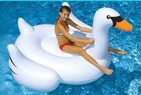 The Swan Water Float