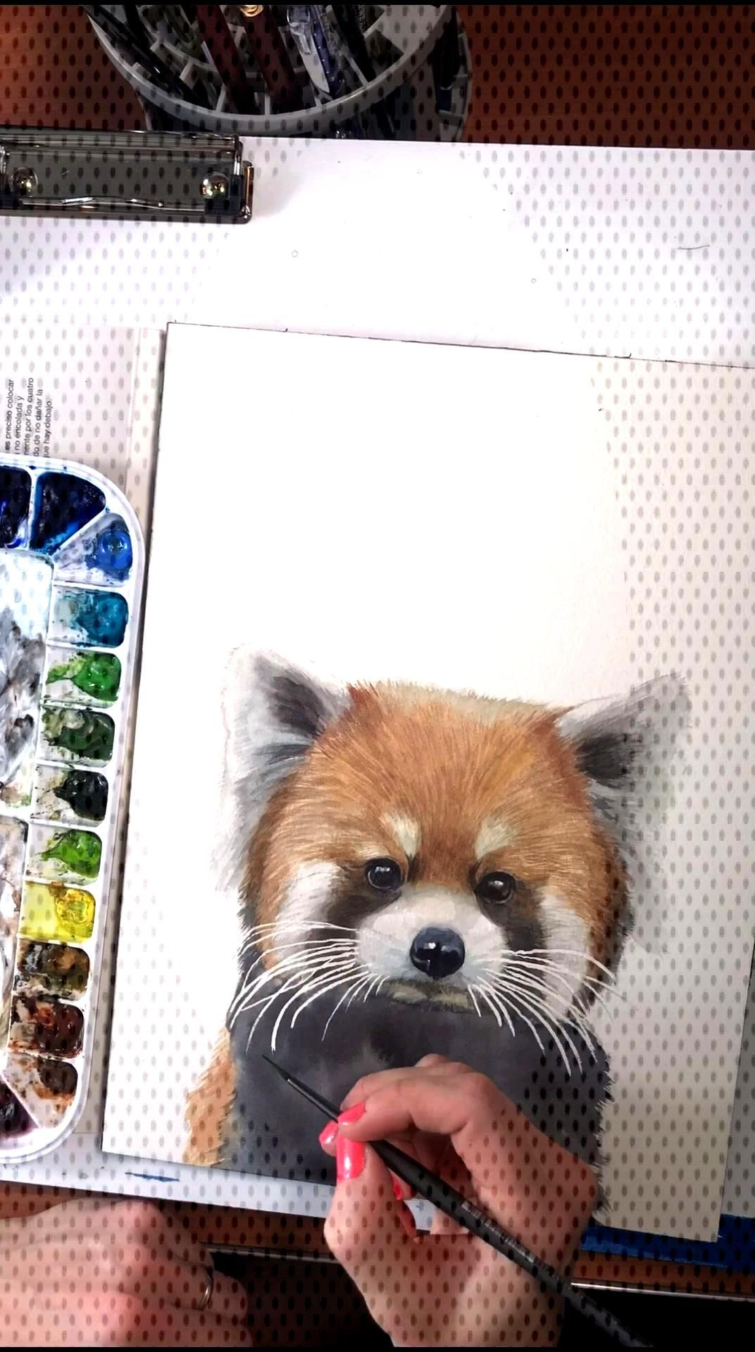 Red Panda watercolor time lapse video Do you have a Red Panda lover in your family? Baby Animal Art