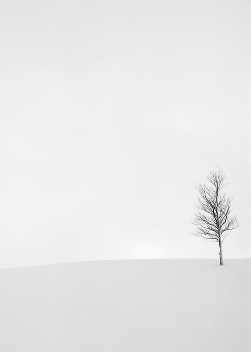 Gray Day By Tomo Minimal Photography Black And White Landscape Sky Photography