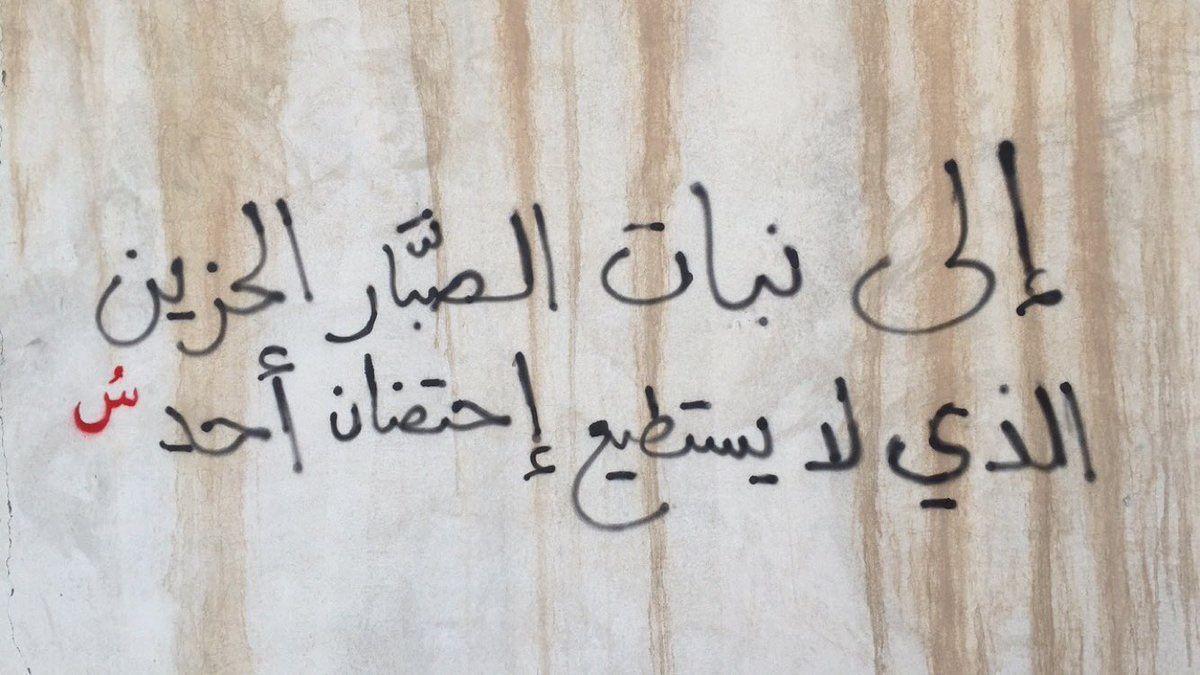 إلى نبات الصب ار الحزين أدب الشارع Street Art Quotes Street Quotes Wall Writing