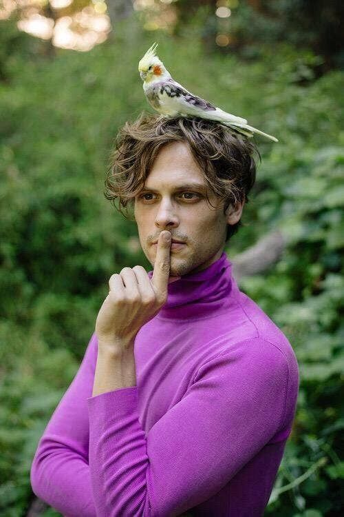 25 Pictures That Prove Matthew Gray Gubler Is The