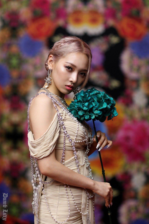 Pin By Ashlynn Lovitt On Somin Kard Kpop Girls Dumb And Dumber
