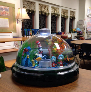 Best 25 Classroom Pets Ideas On Pinterest Fish Tank