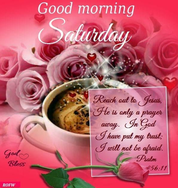 Good Morning Saturday,Psalm 56:11: God Bless.