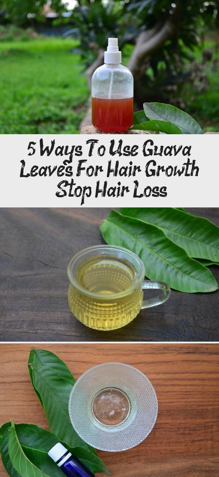 oil for Hair Growth Growth Growth african american Growth before and after Growth chart Growth diy Growth faster Growth in a week Growth mask Growth onion Growth products...