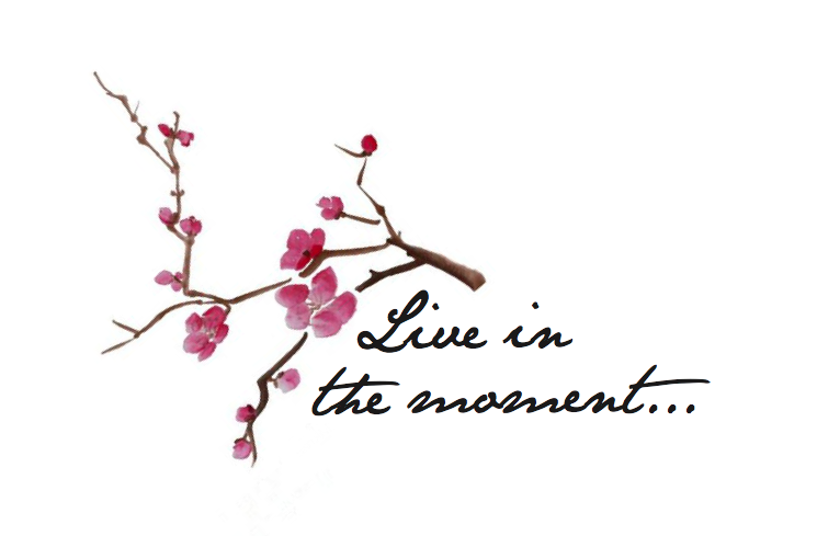 Cherry Blossom Tattoo Quote Png 745 489 Cherry Blossom Tattoo Cherry Blossom Tattoo Meaning Blossom Tattoo