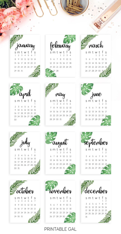 2019 Calendar Template Printable 2019 Wall Calendar Printable 2019 Desk Calendar 2019 Printable Modern Minimalist Tropical 5x7 Calendar 2019
