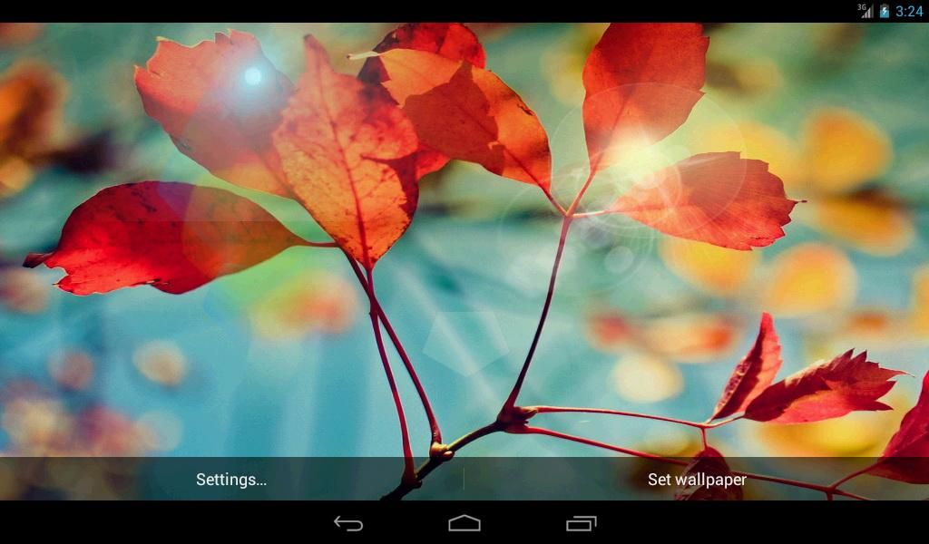 S4 Red Leaf Live Wallpaper | Download do APK para Android ...