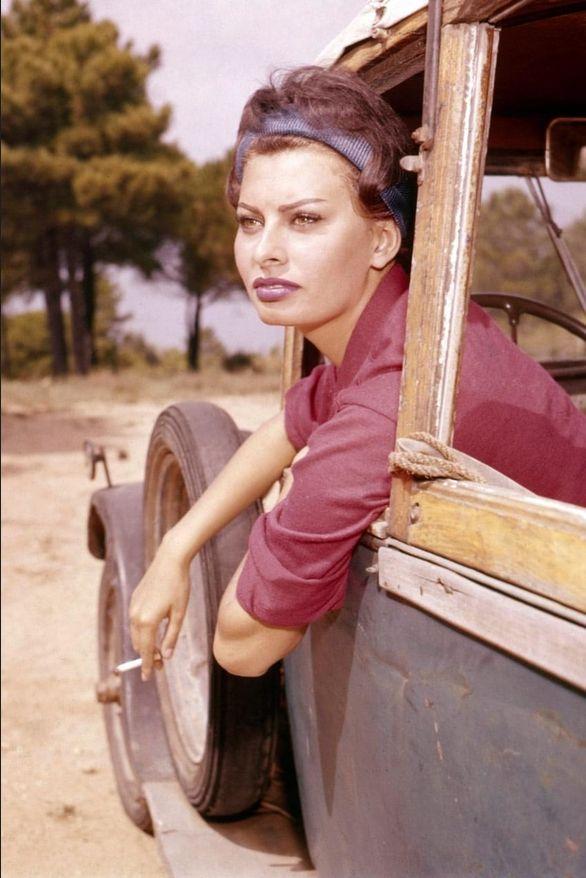 L Album Photo Vintage Des Stars A Saint Tropez Sophia Loren