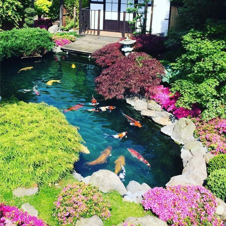 Photo of Breathtaking fish pond design., #Design #Fisch #JapaneseGardendiy #JapaneseG …