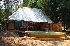 Sausage Tree Lodge @Katie Lower Zambesi - Zambia