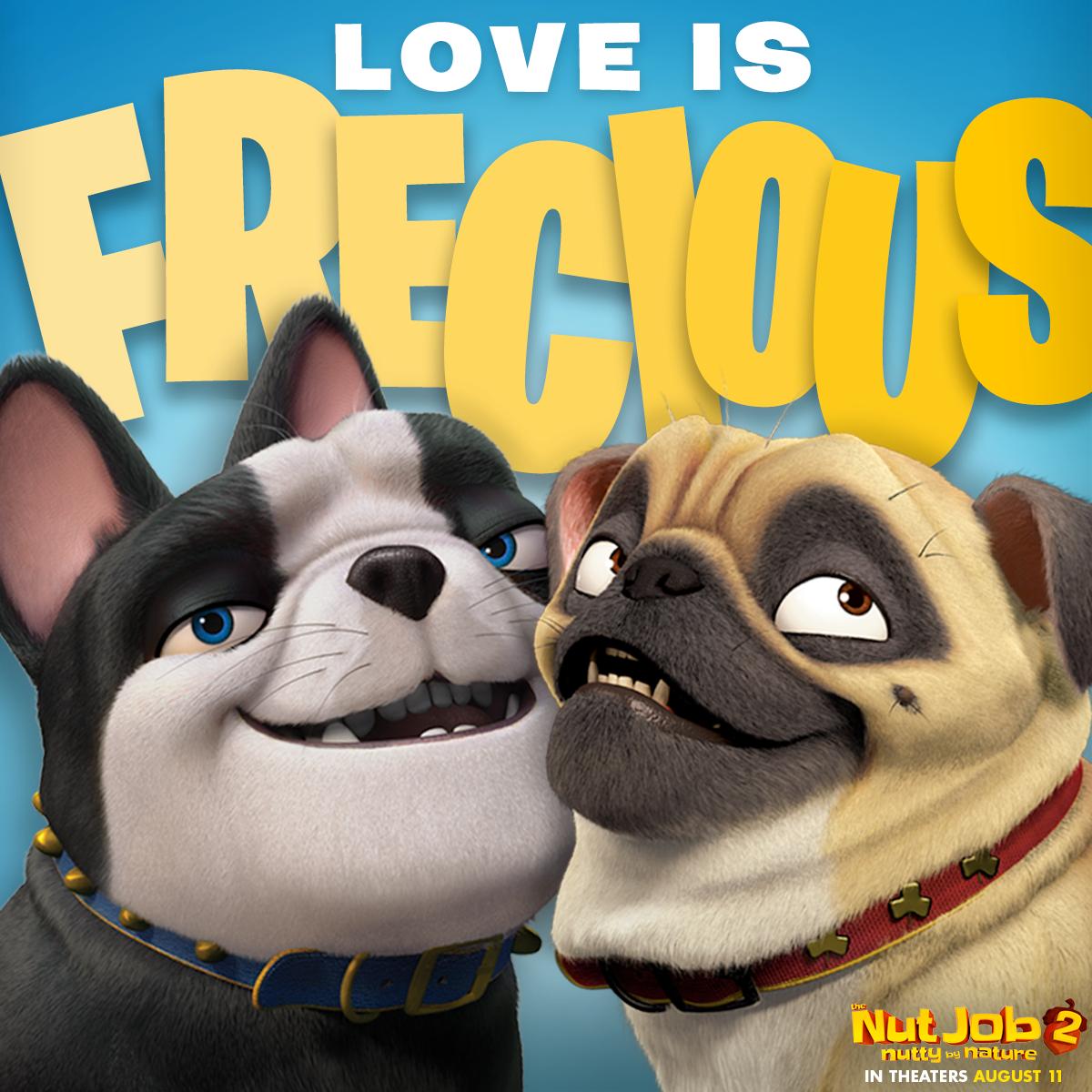 Frankie Precious Best Friends Tag Your Best Friend To Celebrate Nationalbestfriendsday Thenutjob2 The Nut Job Animal Groups Animals Friends