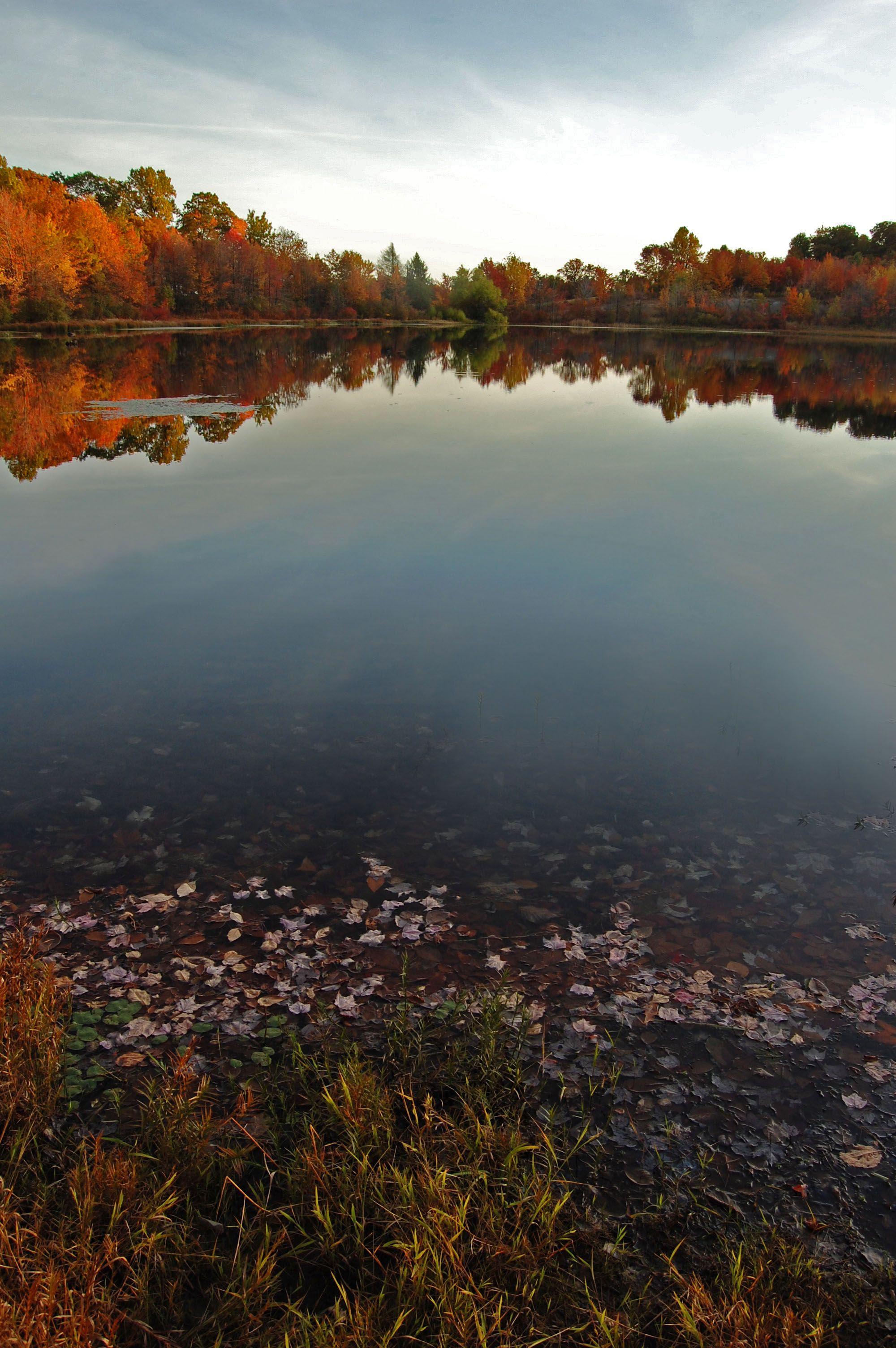 Autumn Pennsylvania Usa Natural Landmarks Nature Places