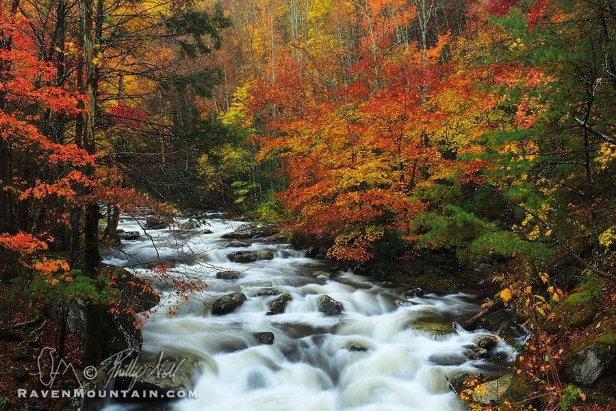 Tremont Fall by Raven Mountain Images on 500px