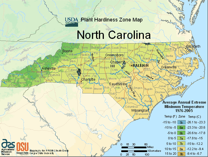 North Carolina Planting Zones Usda Map Of North Carolina Growing