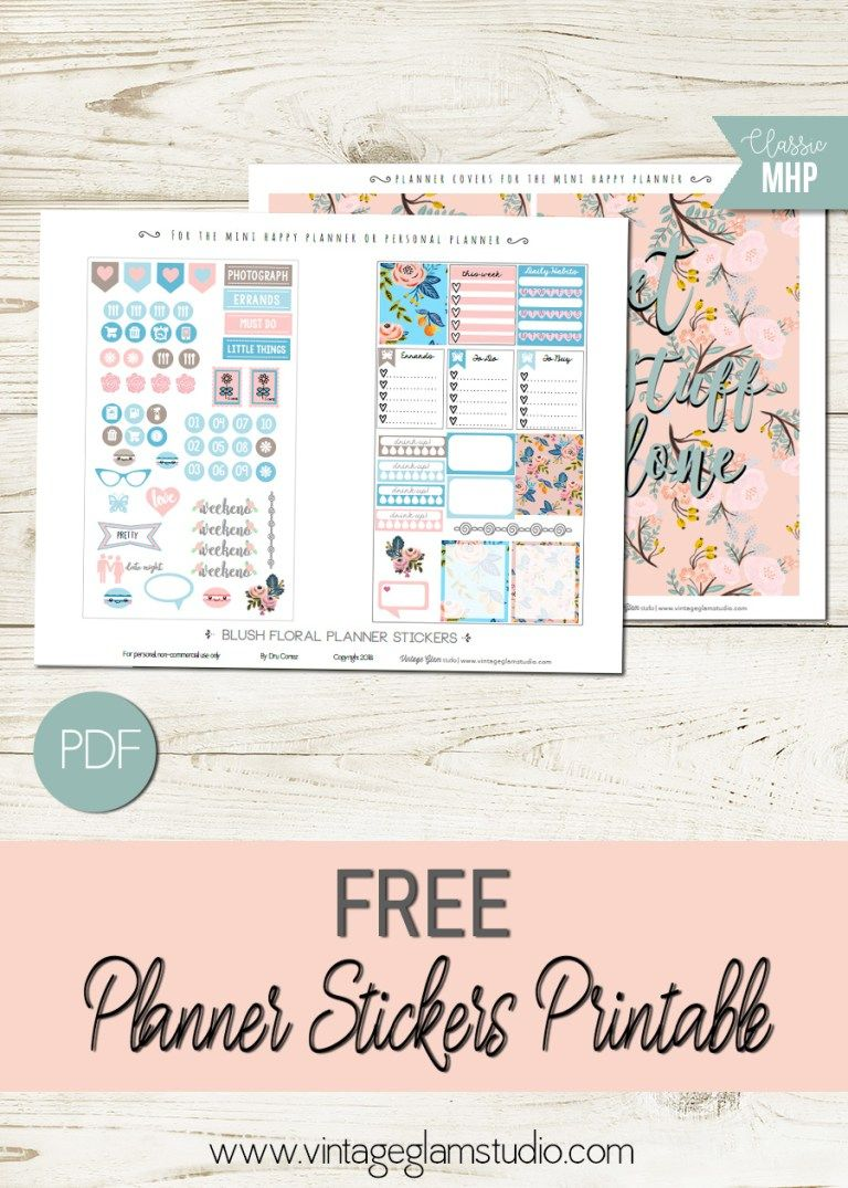 Mini Happy Planner Blush Floral Planner Stickers | Planner