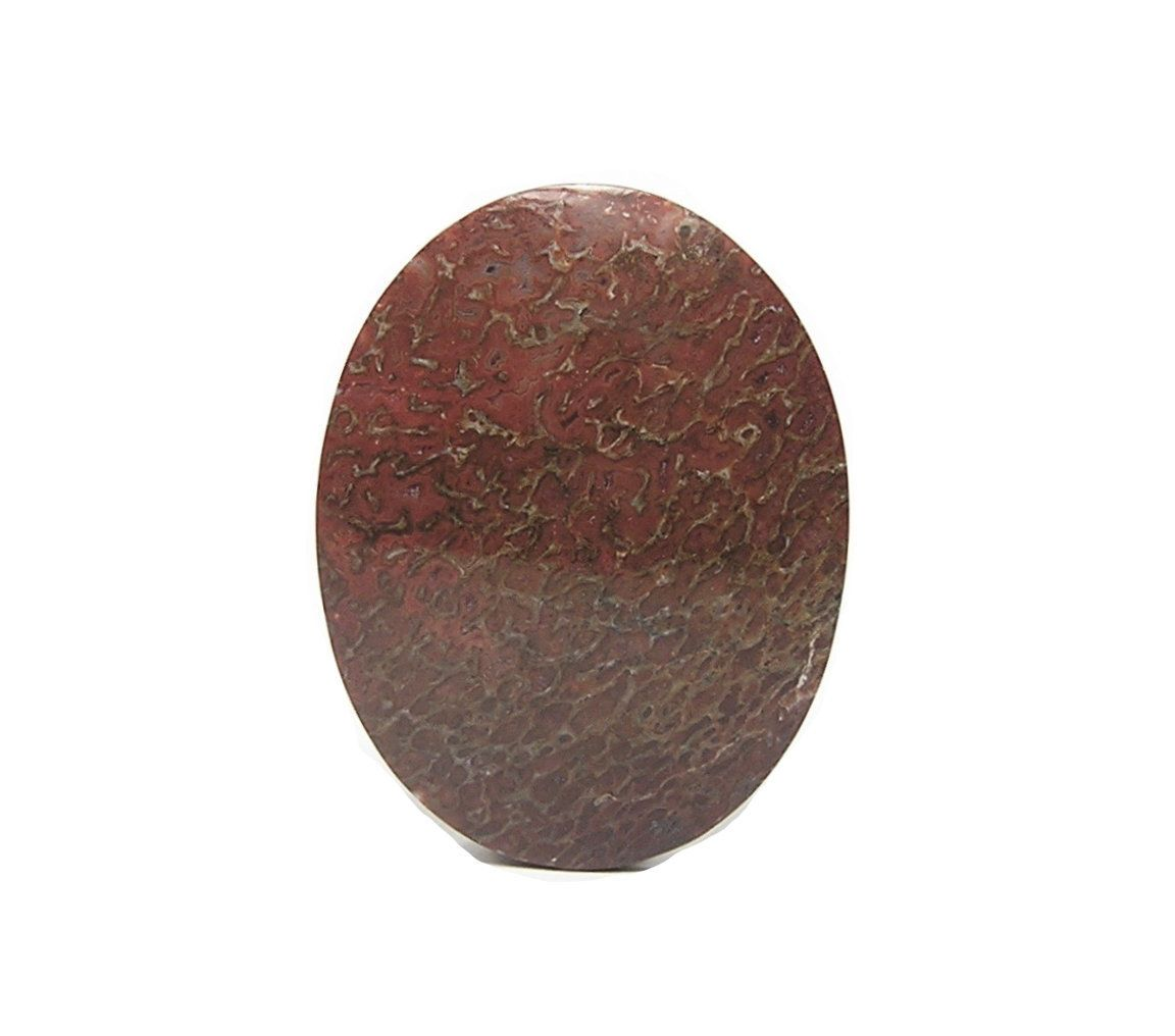 Fossil Dinosaur Gembone Semiprecious Gemstone Agate Dinosaur Oval  Cabochon