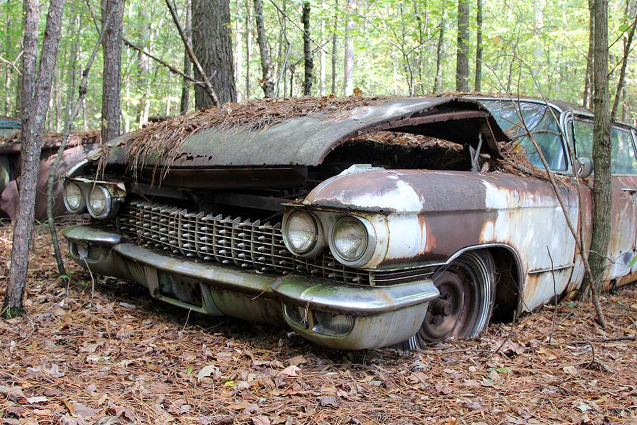 Abandoned autos | Old Car City Usa Abandoned Cars 195 | Autos - Long ...