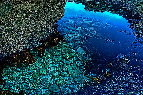 mesmerising rock pool with the blues, greens, turquoise colours. beautiful!