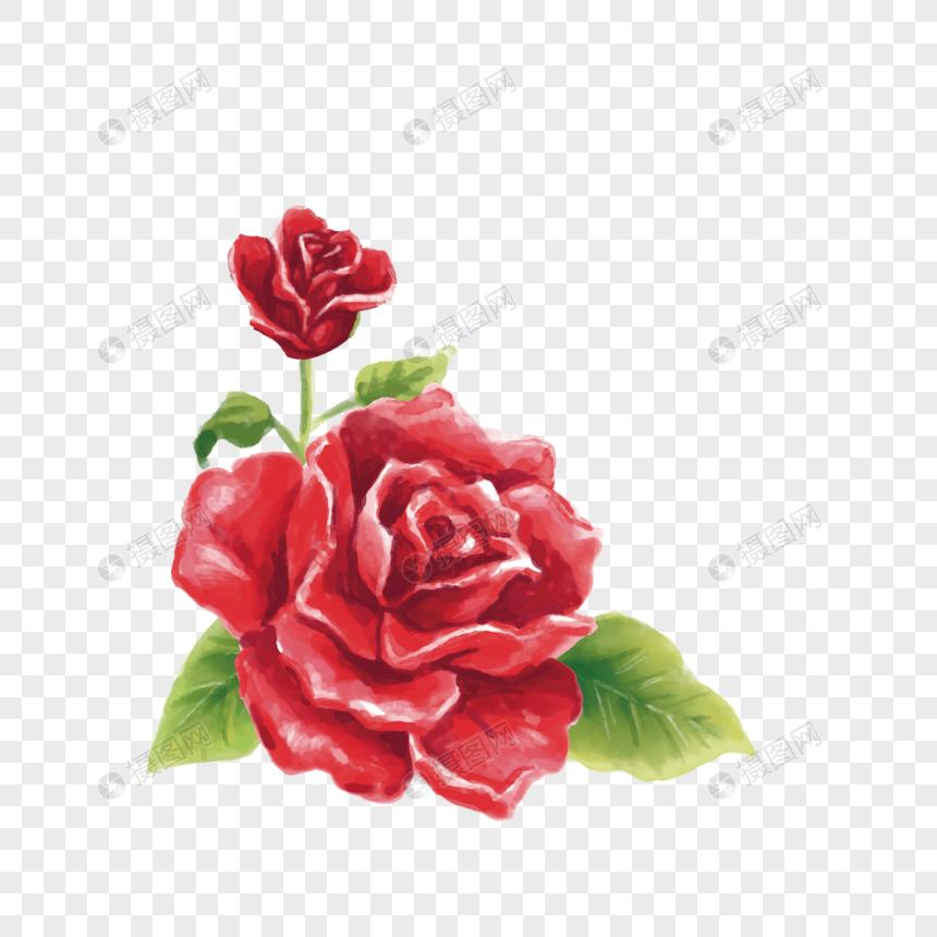 Rose Bright Roses Flowers Roses Cartoon Roses Beautiful Roses Beautiful Roses Web App Design Rose Flower Border